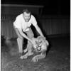 Lion Hunt, 1958