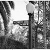 Close-up of Honey Drive street sign, corner of Laurel Canyon Boulevard, Hollywood Hills, 1959
