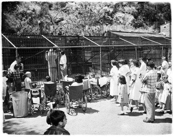 County hospital children visit Griffith Park Zoo, 1958