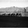 Horses -- race Santa Anita -- San Carlos Handicap, 1958