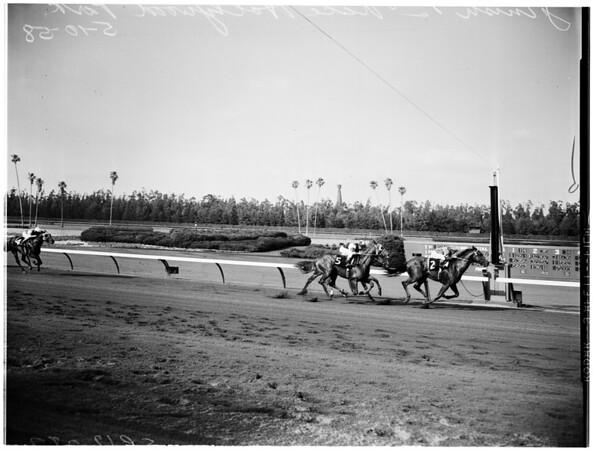 Horses -- race -- Hollywood park races, 1958