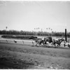 Horses -- race -- Hollywood park races, 1958