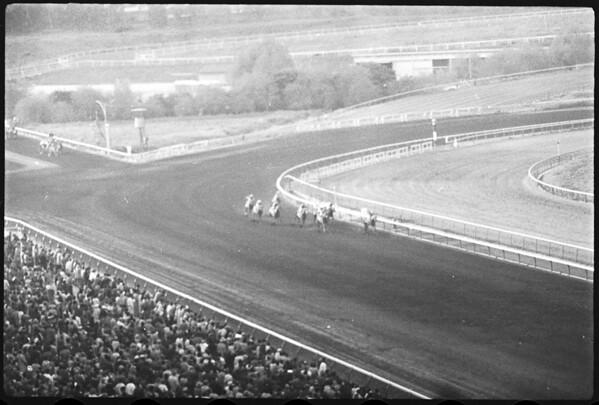 Horses -- Race -- Hollywood Park, 1958