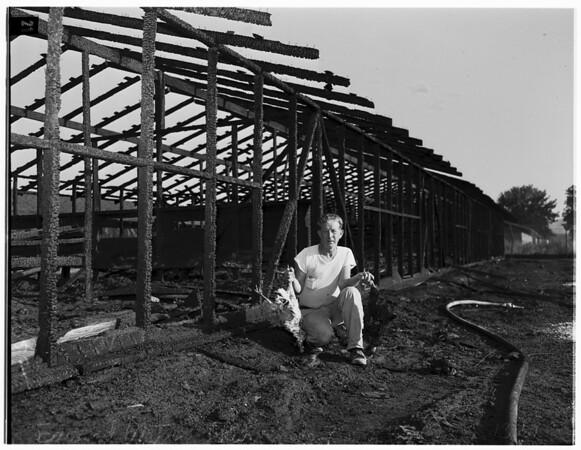 Runnymede Farms burned, 1951