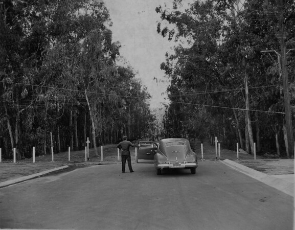 A citizen of Hollywood Riviera brings his car to a stop and looks at the iron post barricade blocking Via Alameda at the edge of Palos Verdes