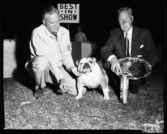 Dog show at Brookside Park, 1957