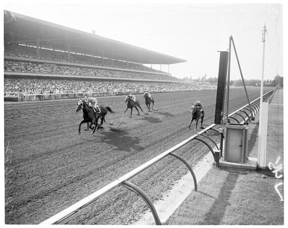 Horses -- Racing -- Hollywood Park, 1959
