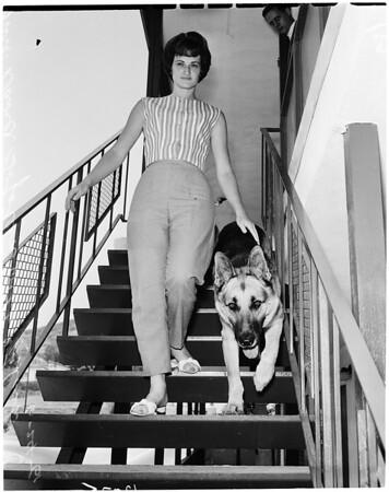 Dog bites Marine, 1961