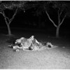 Family sleeps in park to keep cool (MacArthur Park), 1957