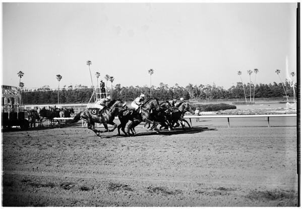Horse racing at Hollywood Park, 1961