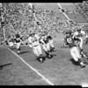 Football, professional, 1960