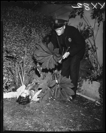 Shooting at 2946 Glenn Avenue, 1957