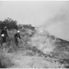 Detail 8 of 17, Fire at Dry Canyon 3 miles North East of Saugus, 1953
