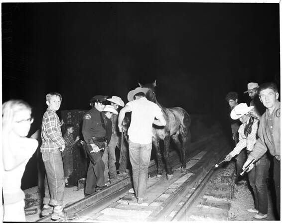 Horse on railroad tressle, 1953