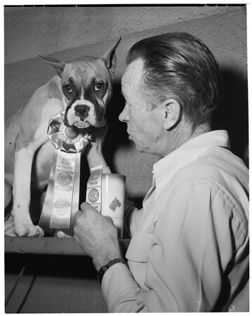 Dog show (Boxer Club of Southern California), 1953