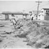 Beach erosion at Surfside Colony, 1953