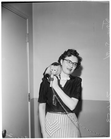 Monkey, 1953