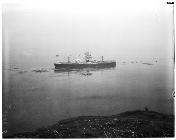 "Grounded ship freed (British Freighter ""Darfield""), 1954"