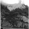Brush fire (end of Dayton Street bridge and Riverside Drive), 1953