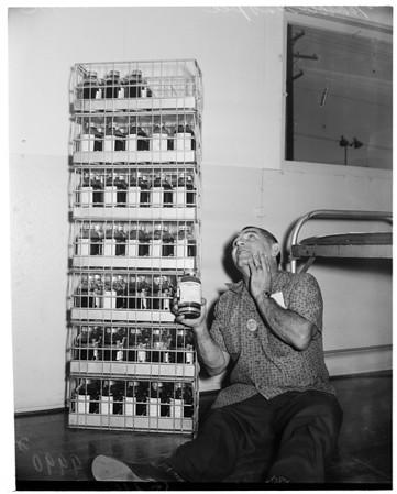 24-hour blood marathon at Lockheed, 1953
