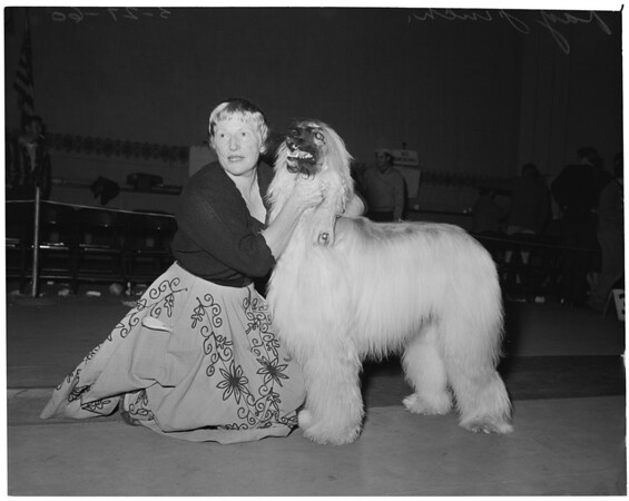 Dog show at Glendale Civic Auditorium, 1960
