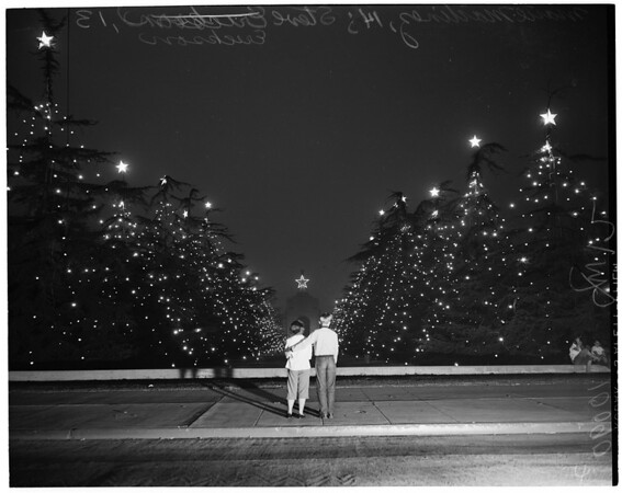Coliseum Christmas trees, 1953