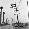 Power lines down, 1954