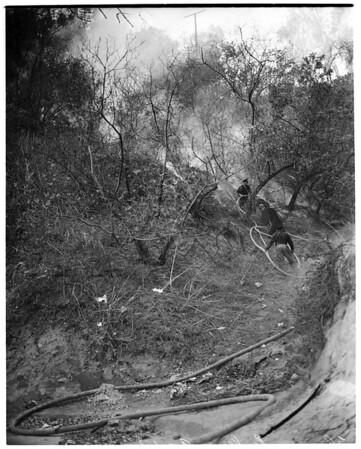 Fire in Elysian Park, 1953