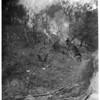 Fire in Elysian Park, 1953