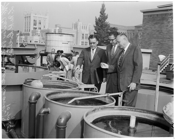 Sea water conversion project at UCLA, 1959