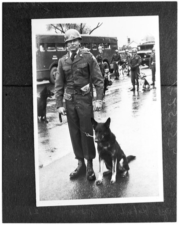 Soldier gets Silver Star for saving dog under fire, 1953