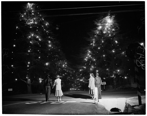 Altadena Christmas Tree Lane, 1953