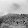 Detail 17 of 17, Fire at Dry Canyon 3 miles North East of Saugus, 1953