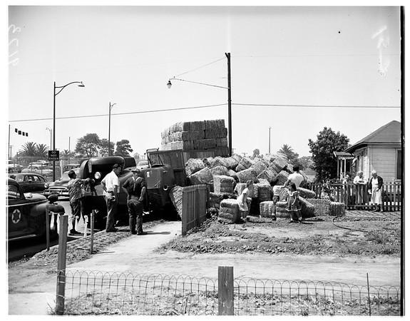 Hay truck overturns (Santa Ana freeway Eastern and Ditman Avenue), 1951