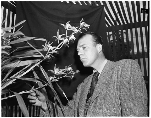 Cop orchid grower in Tujunga, 1951