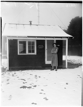 Snow (Mount Wilson), 1951