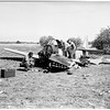 Plane crash, 1951