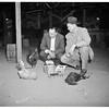 Cock fight, San Dimas, 1951