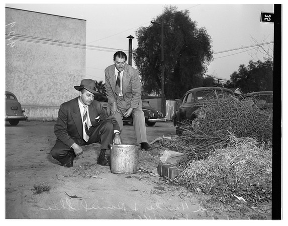 Bomb scare in North Hollywood post office, 1951