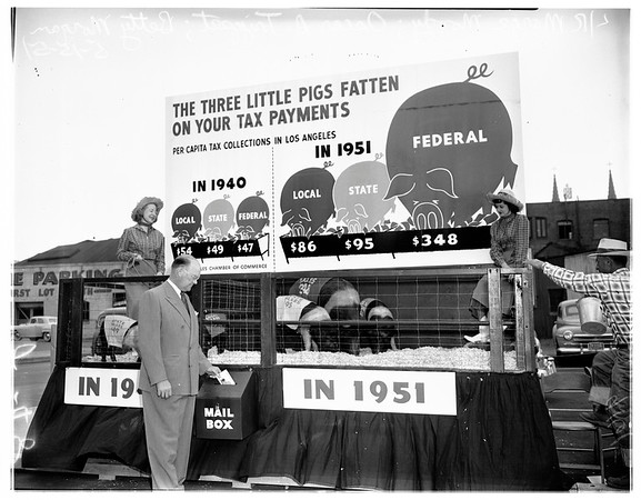 Pig exhibit on tax burden campaign, 1951