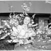 Arcadia Peach Blossom Queen, 1951