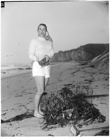 Storm aftermath, 1953