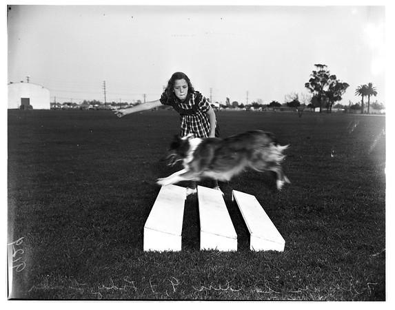 Dog obedience classes, Lynwood, 1951