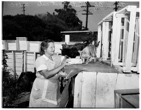 Animal trainer, 1951