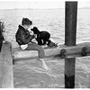 Boy and dog fishing from timber pier, 1951