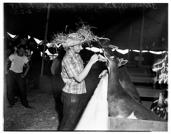 Spring fair at Lakewood, 1951