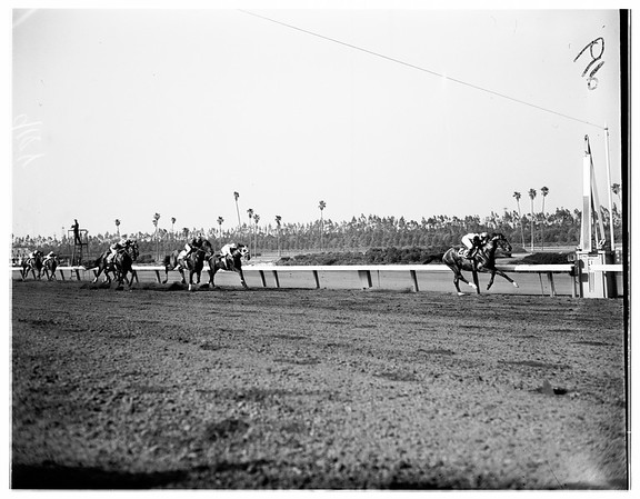 Hollywood Park Races for May 30, 1951