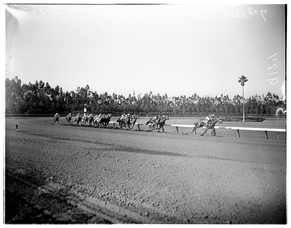 Hollywood Park races for May 26, 1951