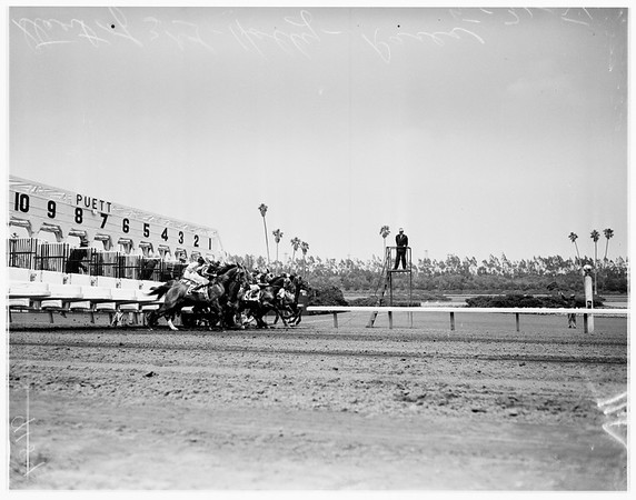 Hollywood Park races for May 31st, 1951