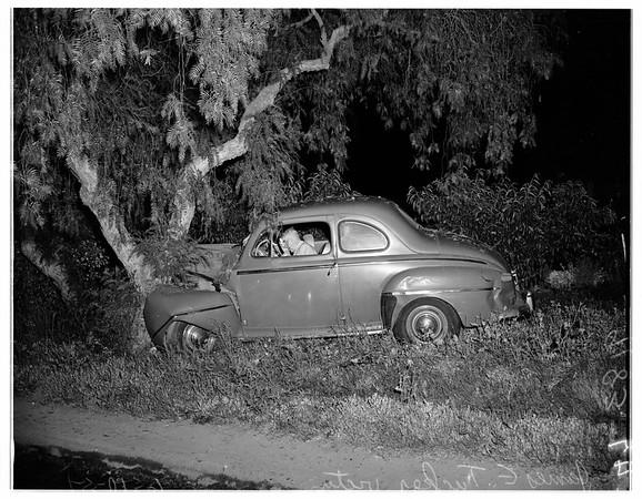 Car into tree -- 3100 block of Motor Avenue, 1951